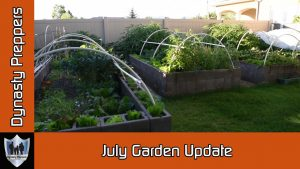 Dynasty Preppers July 2016 Garden Update