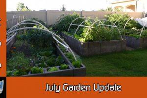 July 2016 Garden Update