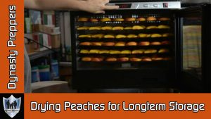 Drying Peaches for Longterm Food Storage