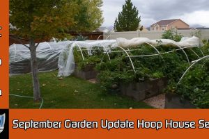 September Garden Hoop House Setup