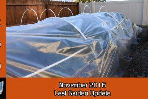November 2016 Last Garden Update