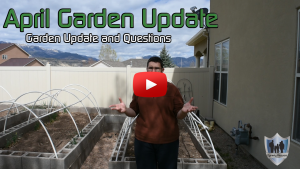 April Garden Update and Questions