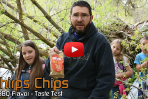 Chirps Chips BBQ Flavor (Made with Cricket Flour)