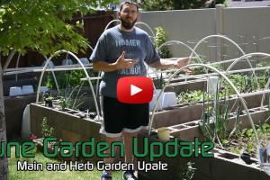 June 2017 Garden Update