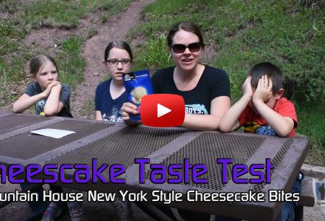 Mountain House New York Style Cheesecake Bites Taste Test