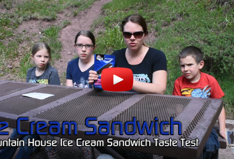 Mountain House Ice Cream Sandwich Taste Test