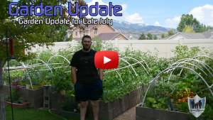 Late July Garden Update Western Colorado Thumbnail