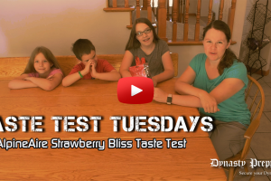 AlpineAir Strawberry Bliss Freeze Dried Strawberries Taste Test