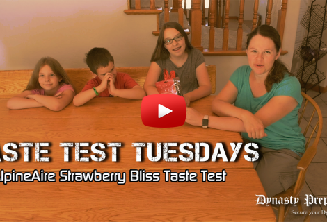 AlpineAir Strawberry Bliss Freeze Dried Strawberries Taste Test